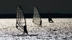Sailors and windsurfers play in the winds on the Ottawa River in Ottawa on Wednesday, July 21, 2021. (Sean Kilpatrick/THE CANADIAN PRESS)