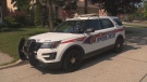 Two people are in custody after a man was stabbed and a woman was assaulted during a discussion about a possible dog sale.