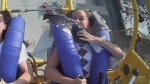 Teen hit by seagull while on rollercoaster