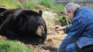 Knut was born in 1996 and arrived at the North Island Wildlife Recovery Centre weighing just 1.5 kilograms: (North Island Wildlife Recovery Centre)