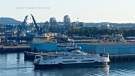 BC Ferries third Island Class vessel is shown arriving in Victoria: (BC Ferries / YouTube)