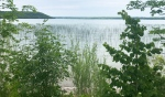 A grassroots group of concerned citizens has formed to take a look at concerns surrounding Lake Mindemoya. (Ian Campbell/CTV News)