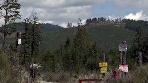 Firefighters are on scene at the Muir Creek fire site near Shirley, B.C., to patrol the area for smoke and potential reignition. (CTV News)