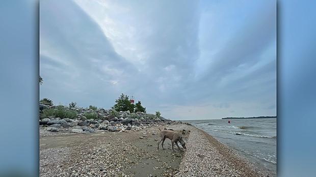 Break water at the marina in Winnipeg beach. Photo by Pat Payjack.