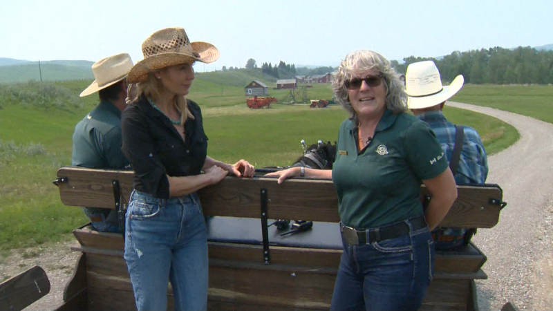 We visit the Cowboy Trail  with Travel Alberta to see the stunning  Bar U Ranch National Historic Site