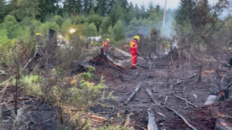 Cumberland fire crews were called to a one-acre fire near the intersection of Lake Trail Road and the Comox Logging Road shortly after 4 a.m. (Cumberland Fire Rescue)