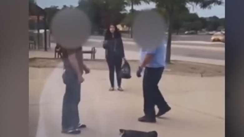 LTC driver appears to punch man at bus stop