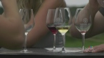 Wineries busy after restrictions ease