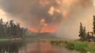 Wildfires