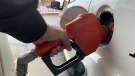 A customer pumps gas at a Petro Canada gas station in Windsor, Ont. on July 23, 2021. (Rich Garton / CTV Windsor)