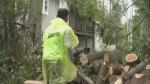 Tornado cleanup continues