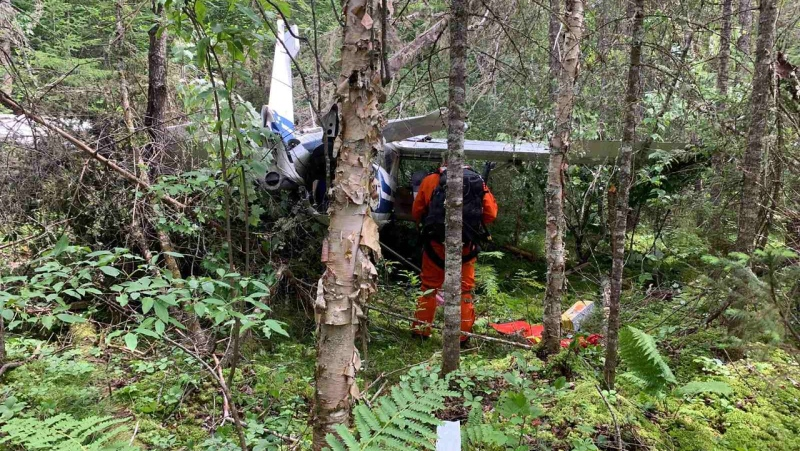 Search and Rescue personnel at the scene of a plane crash north of Petawawa, Ont. on Saturday, July 24, 2021. (Photo courtesy of 8 Wing Trenton, RCAF)