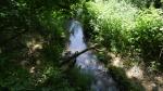 Bear Creek Park in Surrey
