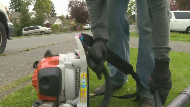 Oak Bay leaf blower debate heats up