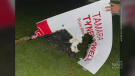 N.S. Liberal candidate signs burned