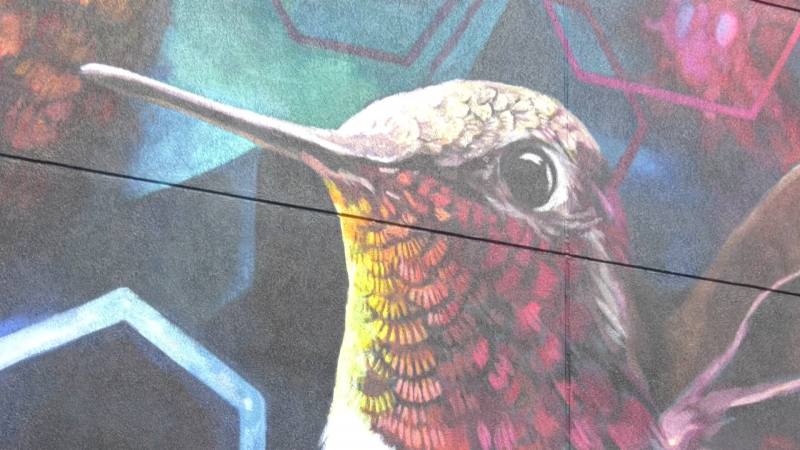 The Cumbria Centre in Spruce Grove unveiled a new eye-catching mural on Tuesday.