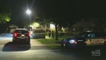 Police investigate shots fired in neighbourhood