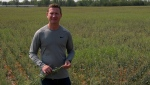 Derek Dery standing in front of a canola crop that's about knee-high when it should be about chest-high. (Francois Biber/CTV Saskatoon)