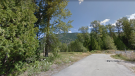 An area at the end of Lagoon Road in Salmo, B.C., is seen in an image from Google Street View.