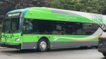 Kingston's first electric buses arrive