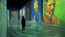 A new immersive exhibit takes visitors inside the world of the Dutch legend Vincent Van Gogh