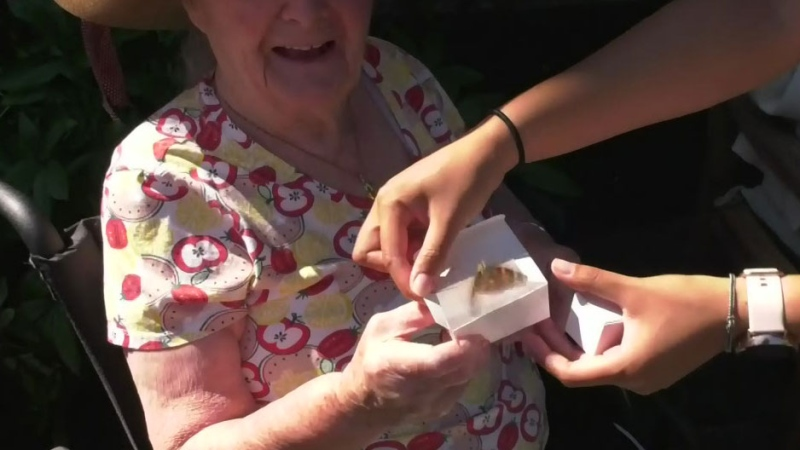 Butterflies released for victims of COVID-19