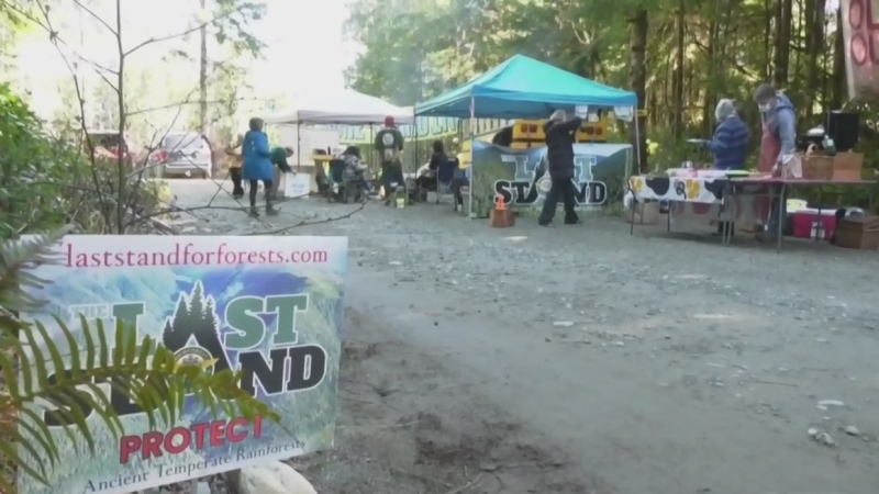 London-area resident aims to protect B.C. forest