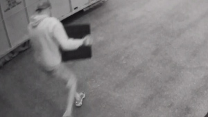 Thieves take 2 trips to rob vacationing residents