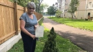 Victoria Moffat shows her letter from the Royal family in LaSalle, Ont. on Friday, July 30, 2021. (Angelo Aversa / CTV News)