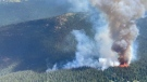 The Fat Dog Creek wildfire burning in E.C. Manning Provincial Park is seen in an image provided by the B.C. Wildfire Service.