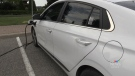 Living Green Barrie held an event on Sat. July 31, 2021 highlighting the importance of electric vehicles (Luke Simard/CTV News Barrie)