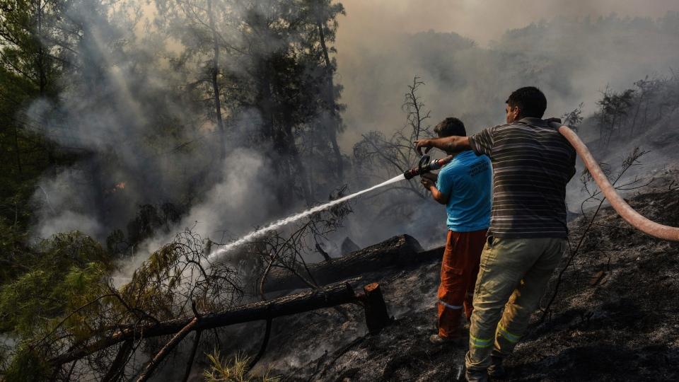 Fires in Manavgat, Antalya