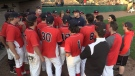 St. Thomas Tomcats talk after an opening victory in the U22 Baseball Ontario Championships in St. Thomas, Ont on Friday July 30th, 2021. (Brent Lale/CTV London)