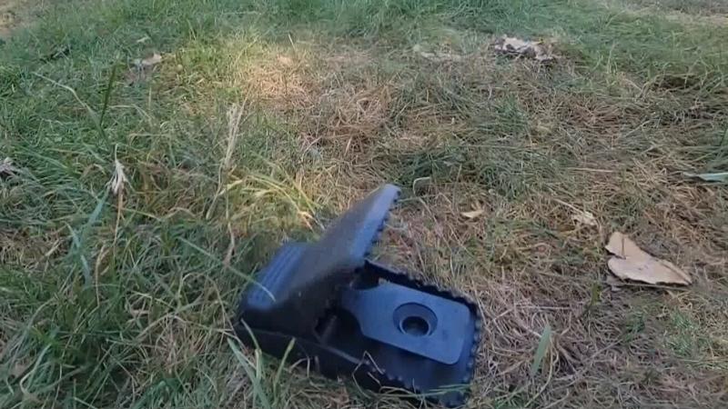 Rat snap trap endangering wildlife