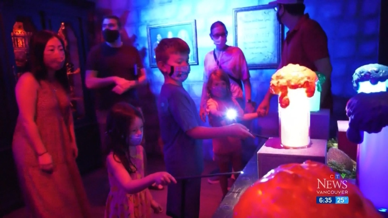 Wings and Wizards exhibit opens
