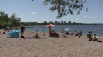 Residents take advantage of the sunshine at Westboro beach on Colonel By Day Monday, despite the possibility of a fourth wave of COVID-19 with the Delta variant surging in different parts of the world. (Colton Praill/CTV Ottawa, August 2, 2021)