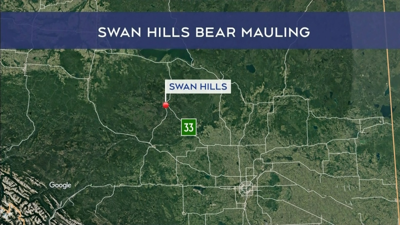 26-year-old mauled by bear in north Alberta