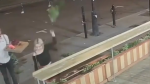 Woman trashes cafe flowers