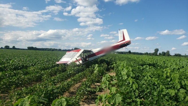 A plane crashed into a bean field on Monday, August 2, 2021 (Source: OPP West Region)