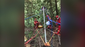 Crews work to rescue a woman from the Elora Gorge (Twitter: @karnDC2)