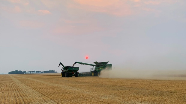 Winding down from harvesting wheat near Roland. Photo by Colleen and Reid Hodgson.