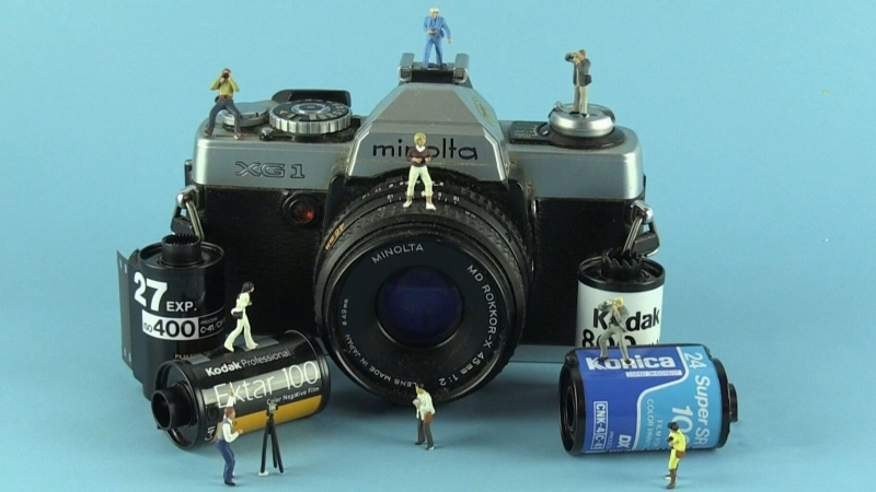 NB artist uses her lens to capture miniature world