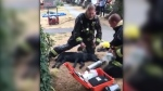 Firefighters help a seven-month-old black Labrador they pulled unconscious from the scene of a house fire in South Vancouver on July 31, 2021. (Twitter/Van Fire Fighters)