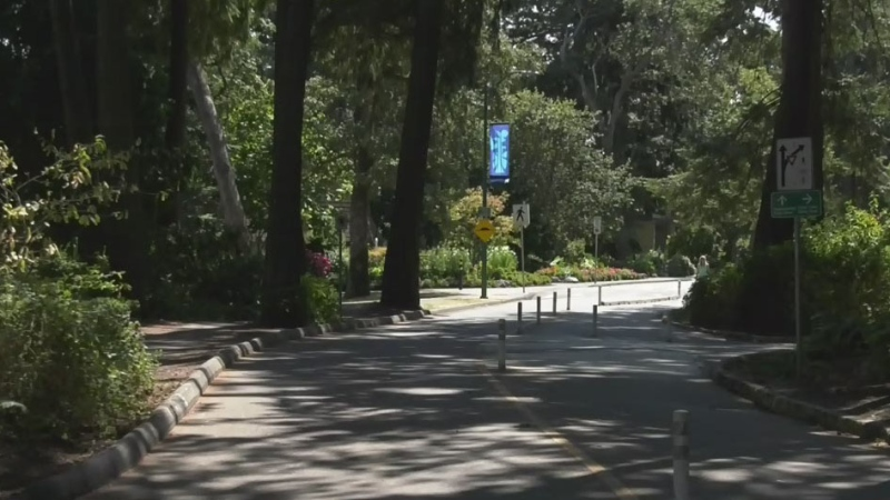 Human rights complaint filed over Beacon Hill Park