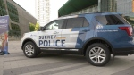 Surrey announces launch of police force