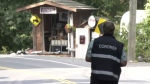 A coroner examines the crash scene along West Saanich Road on Aug. 3, 2021. (CTV News)