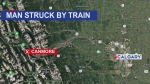 Man dead after being hit by train