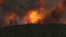 The White Rock Lake wildfire is shown in an image posted to social media by the BC Wildfire Service on Wednesday, Aug. 4, 2021.