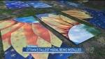 Ottawa's tallest mural being installed