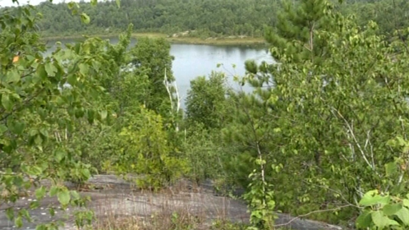 Group concerned about future of LU greenspace